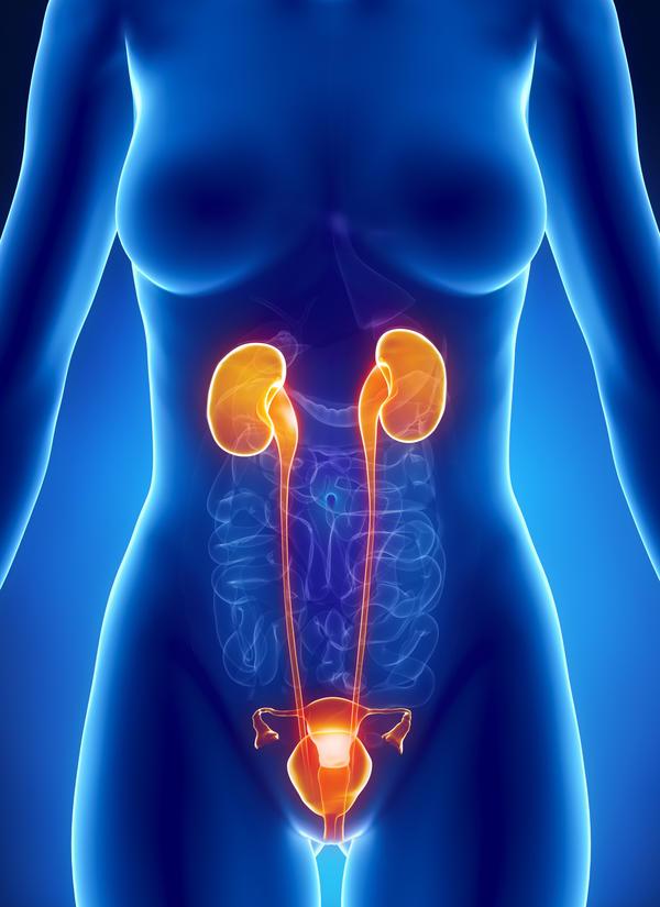 Rizikos faktoriai lemiantys moterų šlapimo takų infekciją
